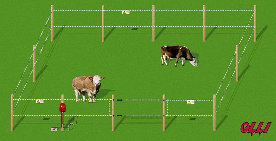 Как работает электроизгородь: